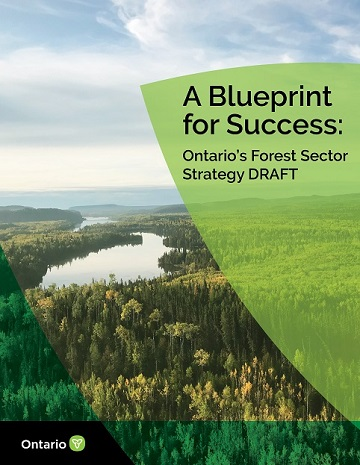 "A forest surrounding water, with a title ""A Blueprint for Success: Ontario's Forest Sector Strategy DRAFT"""